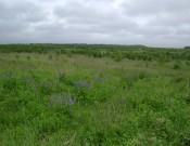 О результатах обследований земель сельскохозяйственного назначения