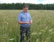 Более 270 га сельскохозяйственных земель в Выгоничском районе вновь используются по назначению