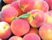 Более 55 тонн свежих персиков возвращено экспортерам
