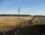 О выявлении нарушения земельного законодательства в Починковском районе Смоленской  области