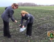 О результатах контроля за сохранением и воспроизводством почвенного плодородия в Брянской и Смоленской областях за 9 месяцев 2016 года