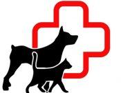 О несоответствии установленным требованиям качества некоторых образцов лекарственных препаратов для ветеринарного применения