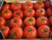 О запрете ввоза более тонны томатов в связи с недостаточностью гарантий в происхождении продукции