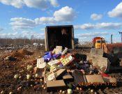 Об утилизации в Смоленской области подкарантинной продукции