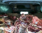 О запрете ввоза 4 тонн мяса говядины из Республики Беларусь