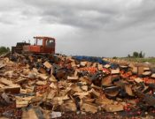 Об утилизации в Смоленской области более 146 тонн подкарантинной продукции