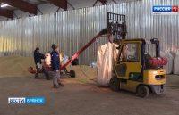 Видео: В Брянской области началась подготовка зернохранилищ к приему нового урожая, ГТРК «Брянск»