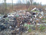 В Красногорском районе обнаружена несанкционированная свалка