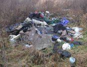 В Навлинском районе обнаружена несанкционированная свалка