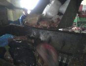 Более восьми центнеров мяса неизвестного происхождения утилизировано в Брянской области
