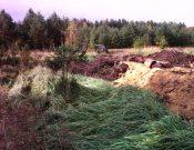 Собственнику земельного участка сельхозназначения придется оплатить штраф