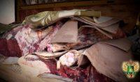 Видео: О некоторых результатах работы по недопущению ввоза мясного сырья неизвестного происхождения