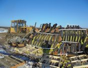 В Смоленской и Брянской областях уничтожено около 60 тонн растительной продукции