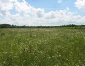 Около 725 га сельскохозяйственный земель в Брянской области так и не используются по целевому назначению