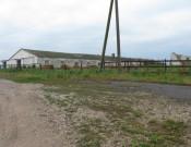 Красногорские сельхозкооперативы допускают серьезные нарушения ветеринарного законодательства