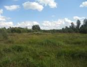 Проблема несанкционированных свалок в Кардымовском районе решена