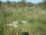 О мерах  по ликвидации свалок на землях сельскохозяйственного назначения