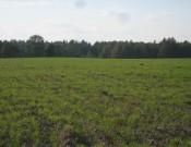 Площадь земель, введённых в сельскохозяйственный оборот Брянской области, выросла ещё на 10,3 гектара