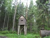 Смоленское ООО «Охотничье хозяйство «Медведь» допускает нарушения ветеринарного законодательства РФ