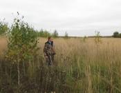 Более 800 га земель сельскохозяйственного назначения заросли сорной растительностью