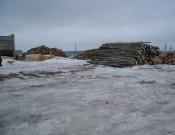 Брянские деревообработчики исключили возможность распространения карантинных вредителей леса на территории своих предприятий
