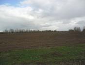 Сельхозпредприятие «Рославльское» проверку не прошло