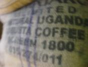 После подтверждения качества и безопасности итальянский кофе выпущен в свободную реализацию