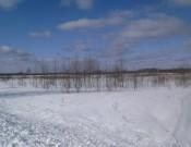 Россельхознадзор обязал новодугинское общество с ограниченной ответственностью «Восток» исполнять земельное законодательство Российской Федерации