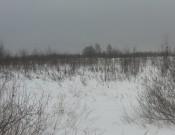 Около 160 га земель не используются кооперативом «Зорюшка»