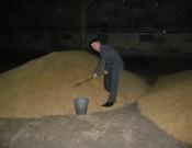 Соблюдение требований законодательства гарантирует качество будущего урожая