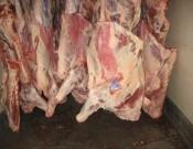 О возврате партии говядины в Республику Молдова