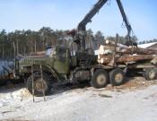 Предприятия, осуществляющие заготовку и переработку древесины, обязаны соблюдать утвержденные карантинные фитосанитарные режимы