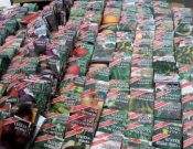 Садоводы и огородники! Будьте внимательны при покупке семян