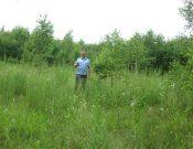 Административное обследование выявило в Навлинском районе 44 гектара зарастающих земель сельскохозяйственного назначения
