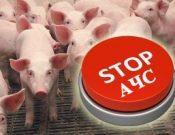 Вниманию руководителей свиноводческих хозяйств и владельцев животных. Риск распространения АЧС сохраняется!