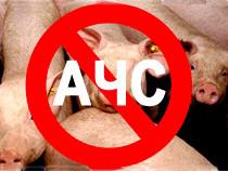 Вниманию руководителей свиноводческих хозяйств и владельцев ЛПХ, содержащих свиней! Сокрытие сведений о падеже животных либо их массовом заболевании может способствовать дальнейшему распространению АЧС