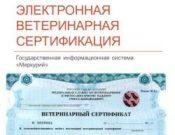 О ситуации с внедрением электронной ветеринарной сертификации на конец августа 2018 года