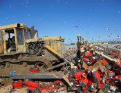 Об уничтожении в Смоленской области 41,5 тонны томатов турецкого происхождения