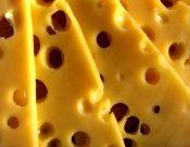 Более 24 тонн сыра возвращено сербскому отправителю