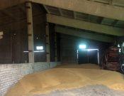 В Смоленской области сельхозпредприятие использовало непроверенные семена