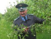 Комментарий специалиста. Опасные болезни садовых деревьев