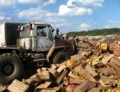 Об утилизации в Смоленской области более 19 тонн яблок неустановленного происхождения