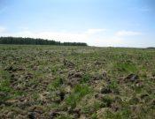 В Брянской области ликвидировано зарастание двух земельных участков сельскохозяйственного назначения