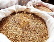 Некоторые итоги работы в первом полугодии 2018 года в сфере контроля за качеством и безопасностью зерна и продуктов его переработки