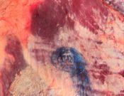 О задержании в Брянской области более 6 тонн говядины неизвестного происхождения