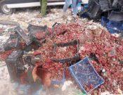 В Смоленской области утилизирована растениеводческая продукция неизвестного происхождения