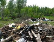 О результатах работы по выявлению и устранению незаконных свалок на землях сельскохозяйственного назначения в Брянской и Смоленской областях
