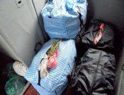 В Брянской области запрещен ввоз 1000 саженцев роз, более 500 кг вишни и персиков, перевозимых в пассажирских поездах, следующих со стороны Украины