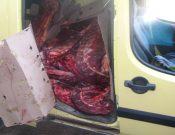О пресечении попытки незаконного ввоза 500 кг мяса говядины неизвестного происхождения