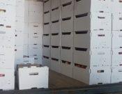 О возврате более 24 тонн продукции растительного происхождения в Республику Беларусь